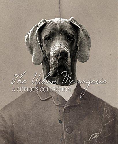 [Anthropomorphic Portrait, Great Dane Gentleman Art Print, Multiple Sizes Available, Unframed] (Inanimate Object Costume)