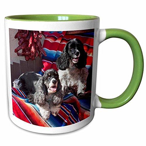 (3dRose Danita Delimont - Dogs - Two Cocker Spaniel dogs on a blanket - US32 ZMU0078 - Zandria Muench Beraldo - 15oz Two-Tone Green Mug (mug_145328_12))