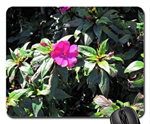 Amazing day at Edmonton garden 11 Mouse Pad, Mousepad (Flowers Mouse Pad)