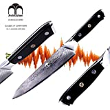 ArchKitchen 8 inch Professional Chef's Knife - Premium Japanese Damascus VG-10 Super Steel 67 Layer - Ergonomic G10 handle - Razor Sharp, Superb Edge Retention, Stain & Corrosion Resistant