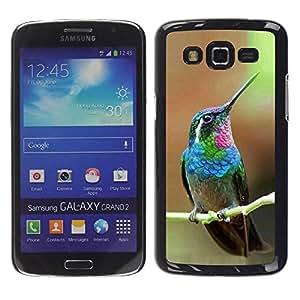 TopCaseStore / la caja del caucho duro de la cubierta de protección de la piel - Cute Tropical Exotic - Samsung Galaxy Grand 2 SM-G7102 SM-G7105