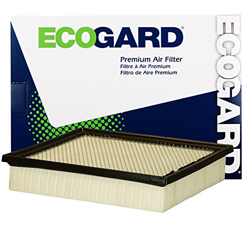 ECOGARD XA10242 Premium Engine Air Filter Fits Toyota Tundra, Tacoma, Sequoia