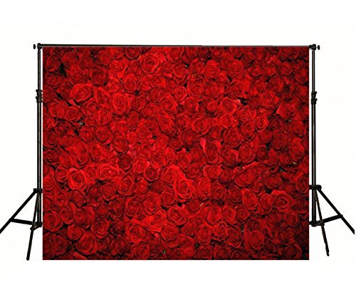 Beautiful Roses Wallpaper (Red Rose Flowers Wall Photography Backdrop for Booth Studio Beautiful Floral Design Photo Backgrounds Photographic Digital Cloth Wallpaper Printed 00003)