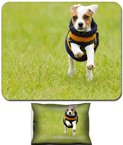 Liili Mouse Wrist Rest and Small Mousepad Set, 2pc Wrist Support parson jack russell terrier 8 weeks puppy running outdoor Photo 20943742 - Jack Russell Terrier Puppies Pictures