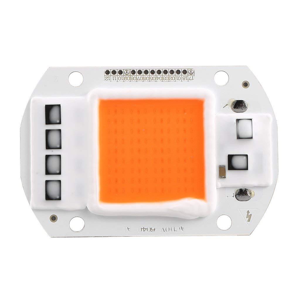 TiooDre 50W LED-Leuchten Full Spectrum Led COB Zimmerpflanze f/Â/¨/Â/¹r Garten wachsen Licht wachsen