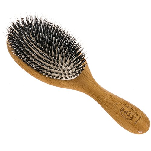 (Brush - Large Oval Cushion Wild Boar/Nylon Bristle Wood Handle Bass Brushes 1 Brush)
