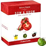 Nature's Blossom Tomatoes Seed Kit - Grow 4 Kinds of Tomato; Sweet...