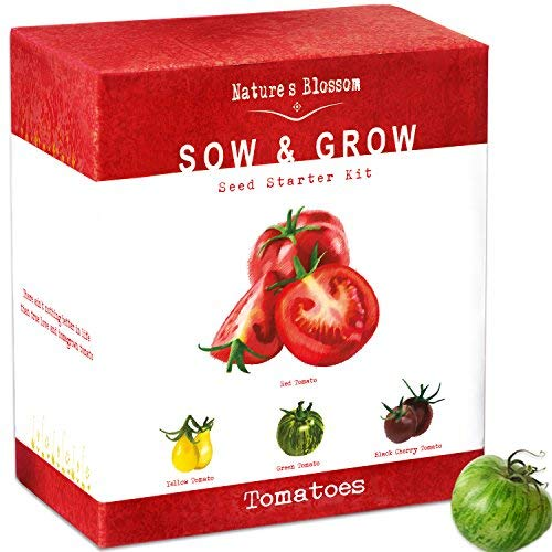 Grow 4 Types of Tomatoes from Seed - Indoor Germination Kit with 4 Packets of Non-GMO Organic Seeds - Sweet Red Tomato, Cherry Tomatoes, Yellow Pear Tomato, Green Zebra Tomato, ()