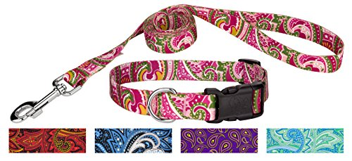 Country Brook Design Pink Paisley Deluxe Collar & Leash - Small