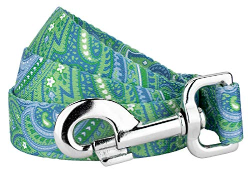 Country Brook Design 1 Inch Green Paisley Leash - 6 Feet