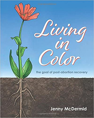 Book Living In Color: the goal of post-abortion recovery