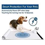 Kek 30 x 16 Inches Indoor Pet Training Mat