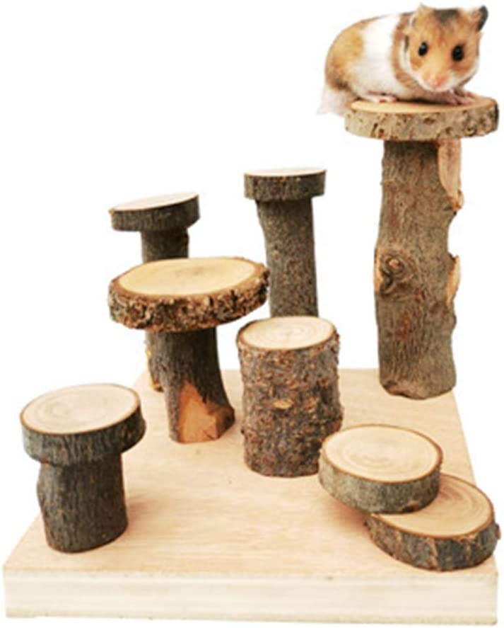 Yanhonin - Juguetes de hámster, puente de escalera de madera de frutas naturales S