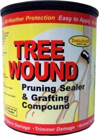 Pruning Seal - 8