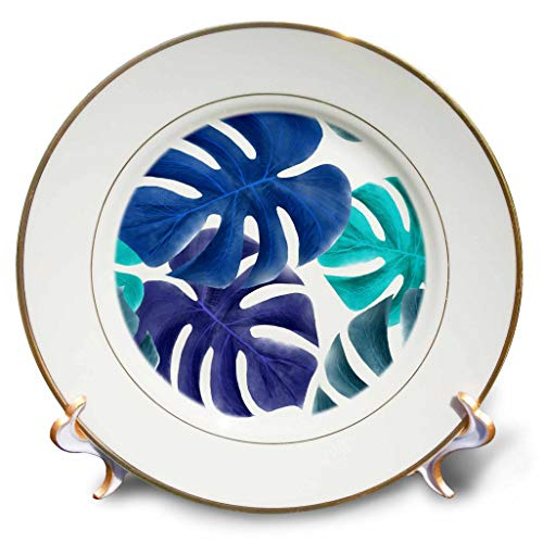3dRose Lens Art by Florene - Hawaiian Fauna Paintings - Image of Beautiful Up-Close Elephant Ears in Aqua and Blue - 8 inch Porcelain Plate ()