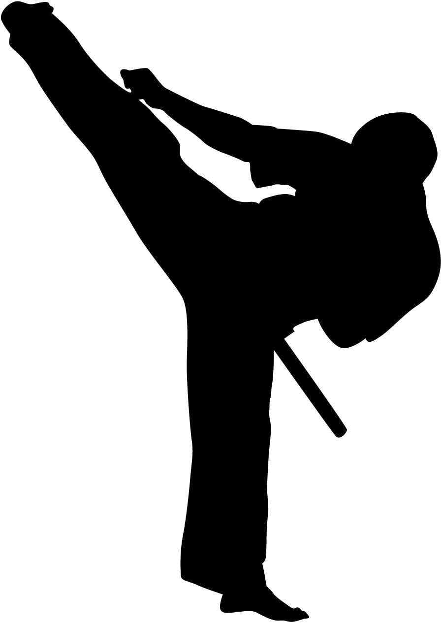 Martial Arts Wall Decal Sticker 42 - Decal Stickers and Mural for Kids Boys Girls Room and Bedroom. Karate Sport Wall Art for Home Decor and Decoration - Martial Art Kung Fu Taekwondo Silhouette Mural