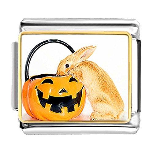 GiftJewelryShop Gold Plated Rabbit on Jack O Lantern Pumpkin Bracelet Link Photo Italian Charms ()