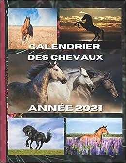 Calendrier des chevaux 2021: Chaque mois une nouvelle magnifique