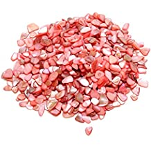 Darice 1406-70 Crushed Small Shells, 16-Ounce, Coral