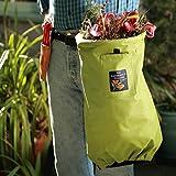 The Gardeners Hollow Leg - Celery Green