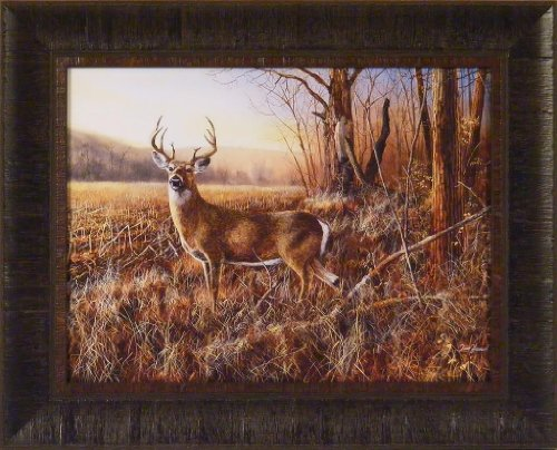 Amazon Com Bluff Country Buck By Jim Hansel 17x21 Whitetail Deer Framed Art Print Wall D Cor Picture Posters Prints