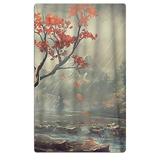 Phyllis Walker Rain Beach Towel Soft Quick Dry Lightweight High Absorbent Pool Spa Towel for Men Women 31 X 51 Inch