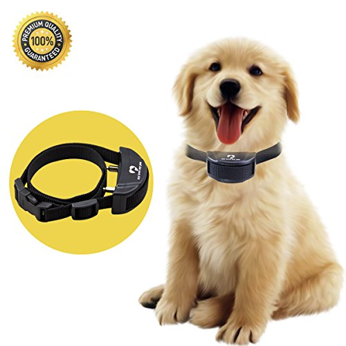 Pet Training Collar Premium Quality Adjustable product image