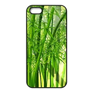 Case For Ipod Touch 5 Cover Case Fresh Green Bos for Women, Luxury Case For Ipod Touch 5 Cover Stevebrown5v, [Black]