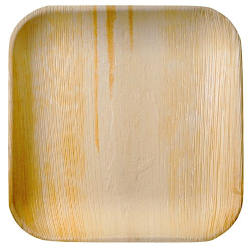 Party Plates Disposable - Elegant, Sturdy, 100% Natural, 100% Compostable, BioDegradable ( 10