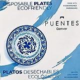 Paper Plates Mexican Design Talavera Design