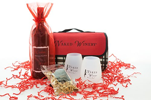 Picnic Blanket Kit Washington Red Blend Wine Gift Set, 1 x 750 mL