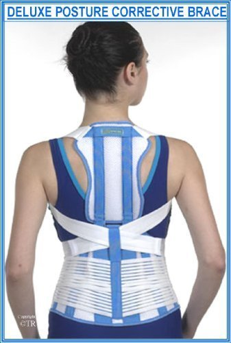 Prolineonline Deluxe Posture Brace & Back Lumbar Support Combined Size = Large by Prolineonline