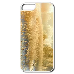 IPhone 5/5S Hard Plastic Cases, Hazy Shade Winter White Cases For IPhone 5 5S