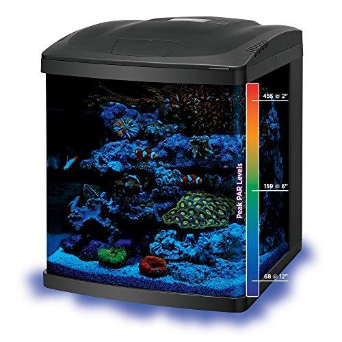 Coralife fish tank led biocube aquarium starter kits size for Fish tank deals