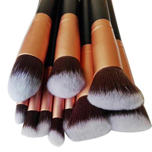 10 Pcs Cosmetic Makeup Tool Brush Brushes Set Powder Eyeshadow Brush