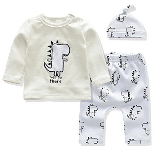 Baby Clothes Boys and Girls Clothing Set Long Sleeve Tshirt+Printing Pants+Hat 3PCS Outfit Suit (12-18 Months, (Embroidered Girls Pant Set)
