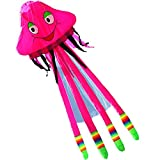 Hengda Kite-NEW 16FT Outdoor Fun Sports Jellyfish Power Kite Single Line 3d Software-Red