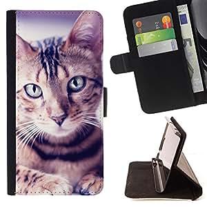 KingStore / Leather Etui en cuir / Sony Xperia Z3 Compact / Retrato del gato egipcio de Mau Manx Ocicat