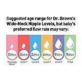 Dr. Brown's Original Wide-Neck Nipple, Level 2