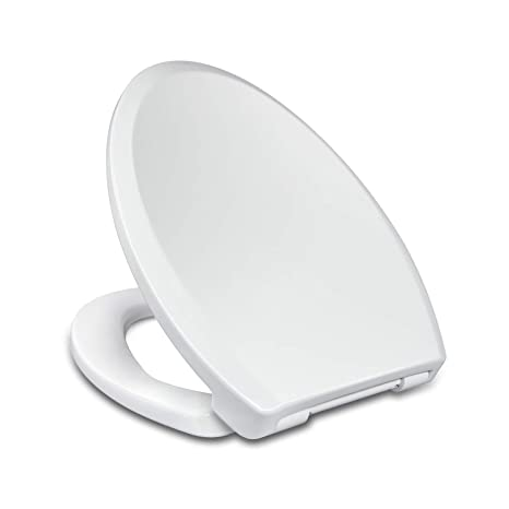 Strange Elongated Toilet Seat With Easy Clean Quick Release Quiet Andrewgaddart Wooden Chair Designs For Living Room Andrewgaddartcom