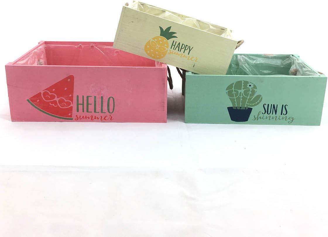 Tres Cajas Summer rectangulares con diseños y Colores Surtidos: Amazon.es: Hogar