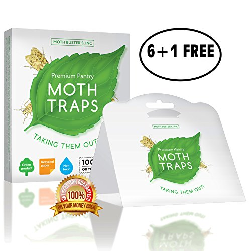 Moth Busters (7) Pantry Moth Traps Safe Non-Toxic Professional Pheromone Trap NO Insecticides (6 + 1 Free!)