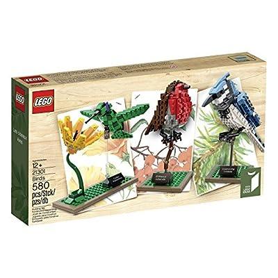 LEGO (LEGO) idea the world of birds 21301: Toys & Games