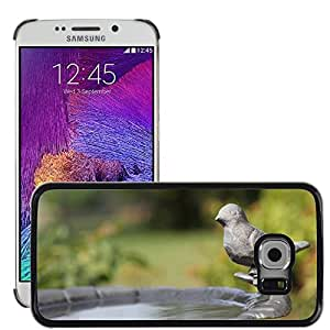 Super Stella Slim PC Hard Case Cover Skin Armor Shell Protection // M00148378 Birdbath Summer Nature Water Bird // Samsung Galaxy S6 EDGE (Not Fits S6)