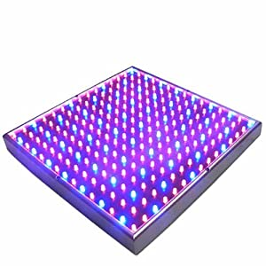 HQRP 14W 225 LED Blue + Red Grow Light Panel for growing Flowers Roses, Tulits, African Violets, Poinsettas + Hanging Kit + UV Meter