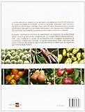 Image de Manuale di ortofrutticoltura. Innovazioni tecnologiche e prospettive di mercato