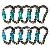Fusion Climb Techno Groove Auto Lock High Strength Ergonomic Carabiner 10-Pack