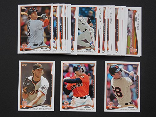 2014 Topps Baseball Master Team Set (World Series Champions) (Includes Series1 and 2 plus Year-End Traded Cards and Highligh Cards (31 Cards)***Ehire Adrianza, Jeremy Affeldt, Joaquin Arias, Brandon Belt, Gregor Blanco, Madison Bumgarner, Matt Cain, Santiago Casilla, Santiago Casilla (update), Tyler Colvin, Brandon Crawford, Heath Hembree, Brandon Hicks, Tim Hudson, Roger Kieschnick, Tim Lincecum, Javier Lopez, Michael Morse, Angel Pagan, Jake Peavy, Hunter Pence, Hunter Pence All Star, Juan Perez, Yusmeiro Petit, Buster Posey, Sergio Romo, Hector Sanchez, Pablo Sandoval, Marco Scutaro, Andres Torres and Ryan Vogelsong*** (2004 Topps World Series)