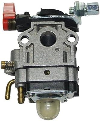 Cortacésped Carburador Motor para 26 cc piezas de repuesto 1e34 F ...