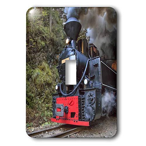 (3dRose Danita Delimont - Trains - Romania. Vaser Valley. Wood-burning, steam locomotive on track. - single toggle switch (lsp_313852_1))